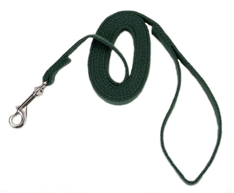 Coastal Train Right! Cotton Web Training Leash Green 5/8X6ft
