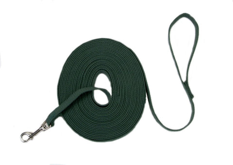Coastal Train Right! Cotton Web Training Leash Green 5/8X20ft