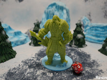 Load image into Gallery viewer, Male Frost Giant