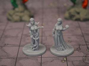Dark Elf Clerics
