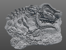 Load image into Gallery viewer, Ancient Black Dragon Skeleton