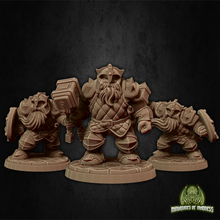 Load image into Gallery viewer, Dwarf Soldier Set 1
