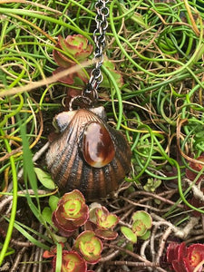 Real Seashell Necklace With Fire Agate - Serpent + Sage