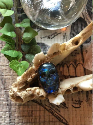 Labradorite Carved Skull Ring | Size 8.5 | Unisex Copper Jewelry - Serpent + Sage