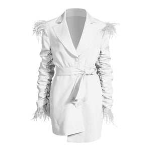 Pleated Feather Irregular Temperament Dress