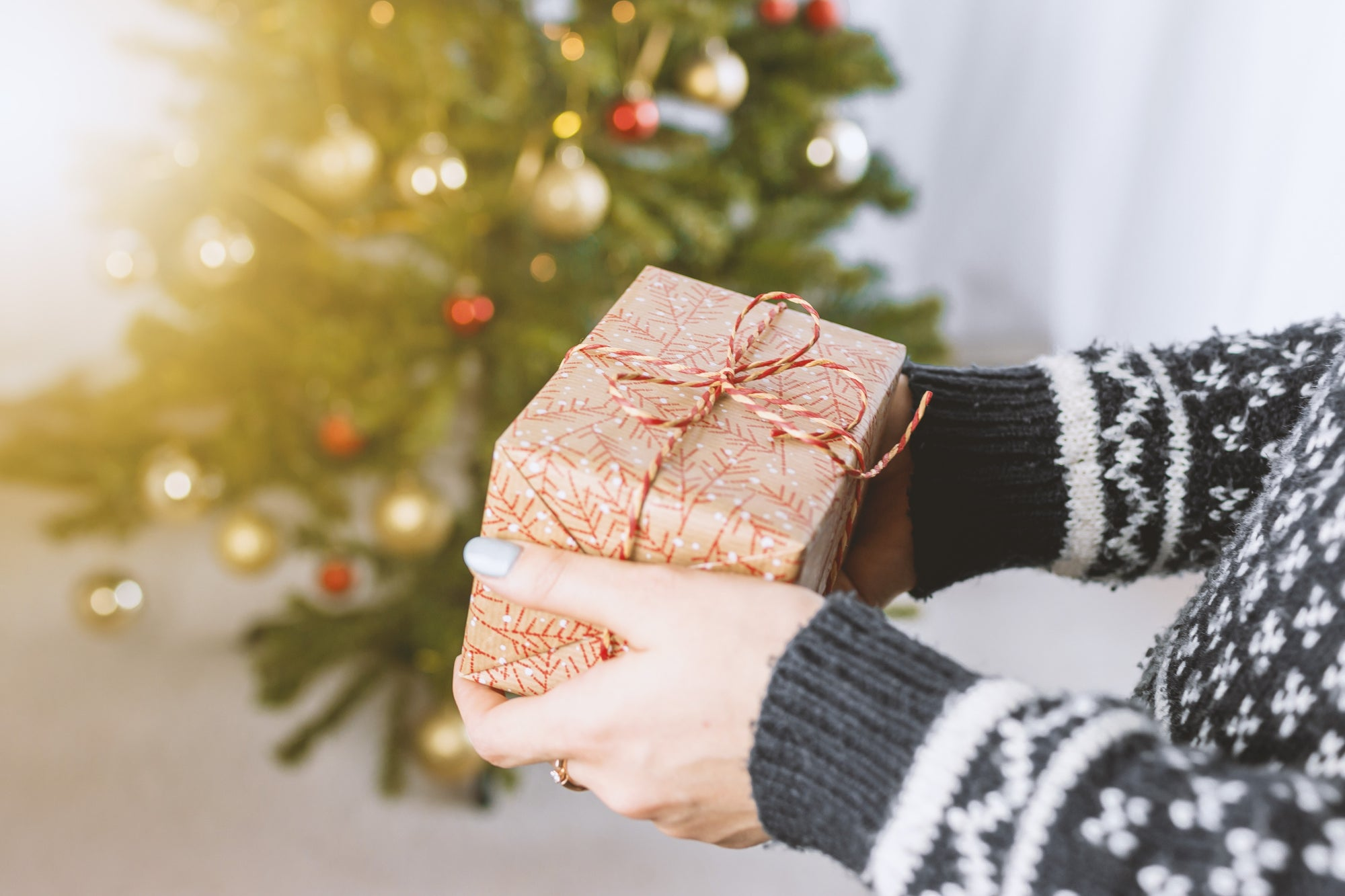 Holiday Gift Guide 2019 - Natural Skincare Gifts Made With Sea Kelp!