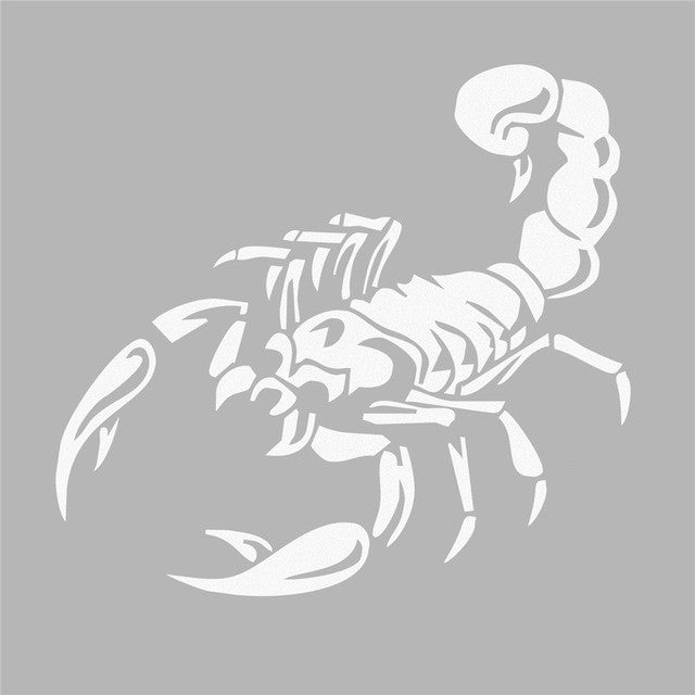 Scorpion Car Sticker Scorpion Decal Car Stickers Decals New Car Gadgets