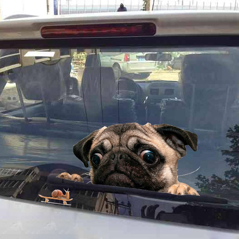 Funny Cool 3D Pug Dogs Car Window Sticker Car Stickers Decals New Car Gadgets