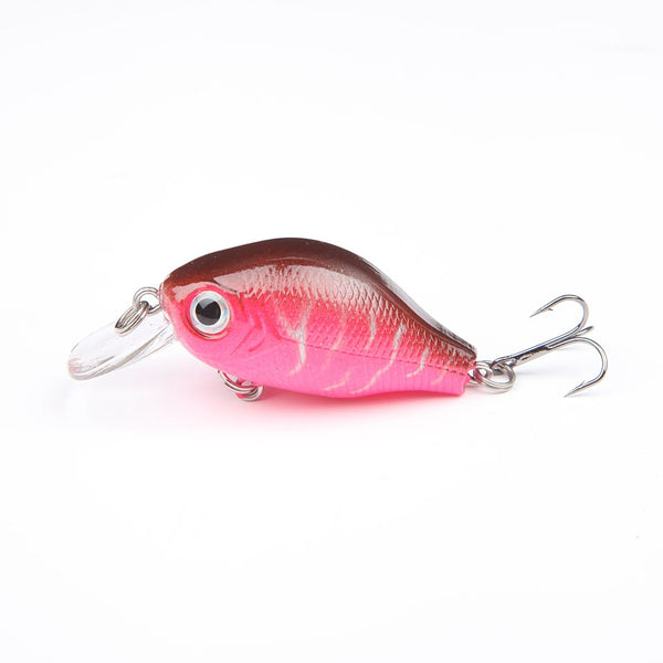 Bass Fishing Lures
