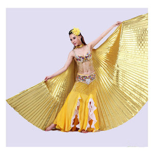 Egypt Belly Wings Dancing Costume
