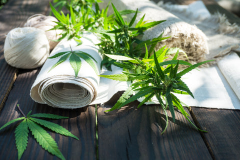 Leaves of cannabis and rolled hemp cloth