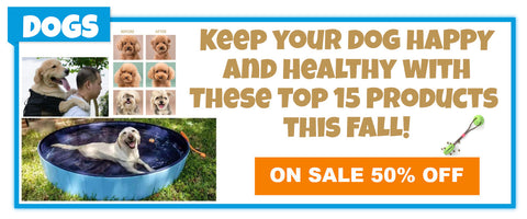 15 OP ITEMS FOR DOGS THIS FALL
