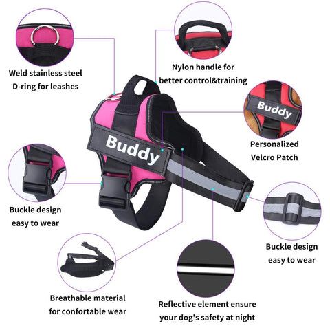 PetKiddies Personalized Harness Features