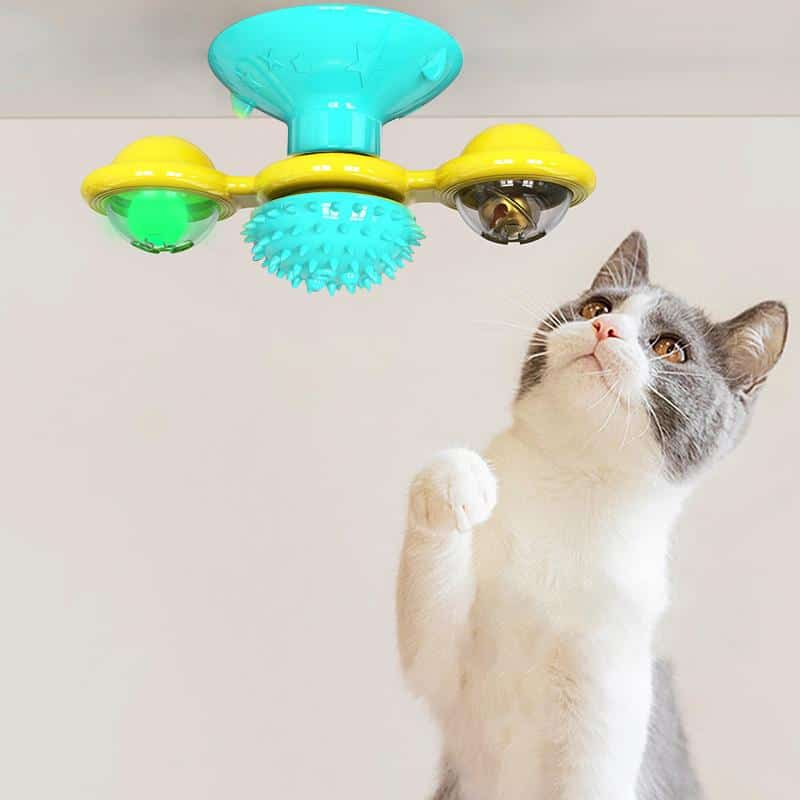PetKiddies Kitty Windmill
