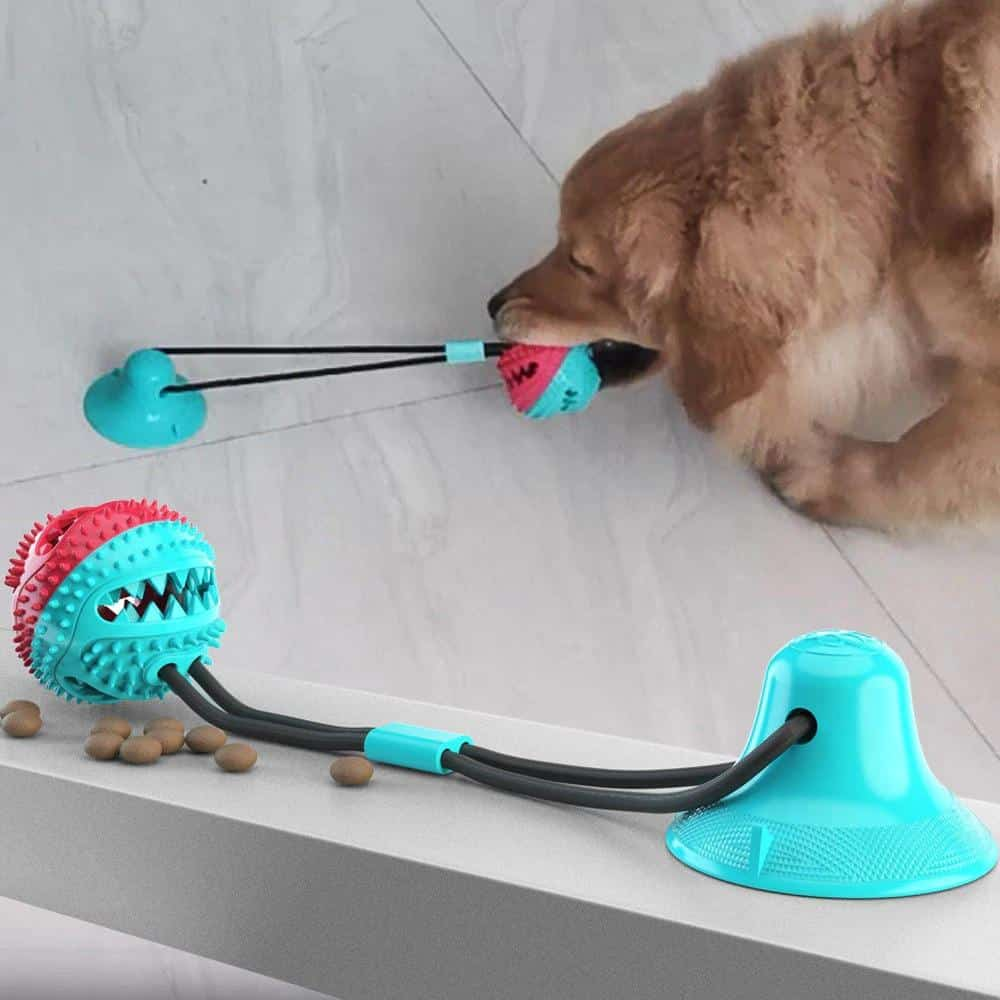 PetKiddies Suction Cup Tugger
