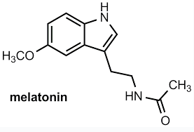 Melatonin - Hormone of darkness