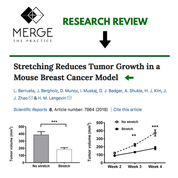 Stretching reduces TUMOR GROWTH
