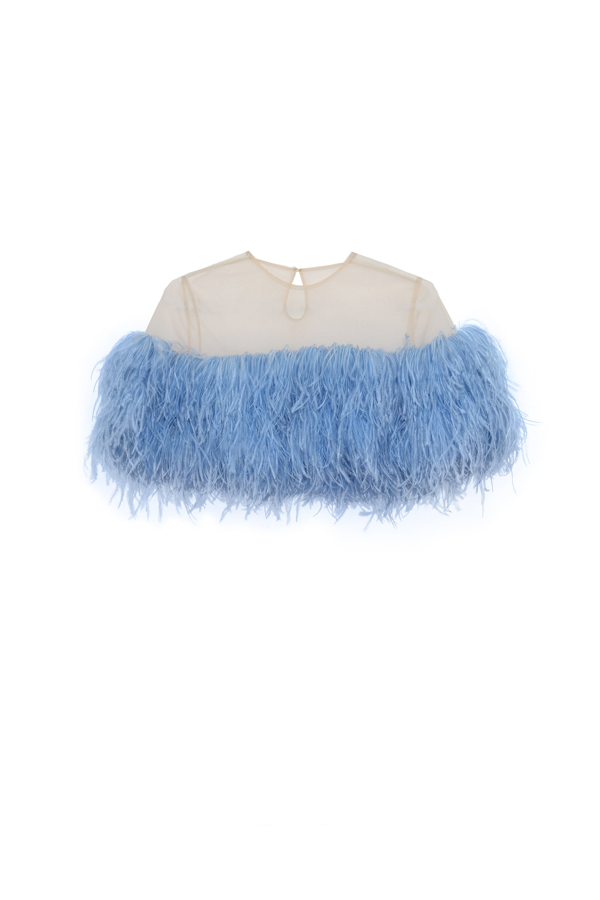 Cropped feather-trimmed tulle top