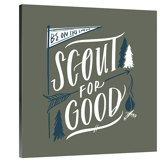 Scout For Good