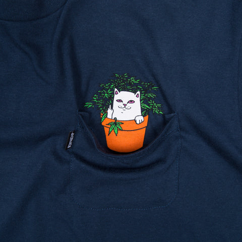Cat Nip Tee (Navy Blue)