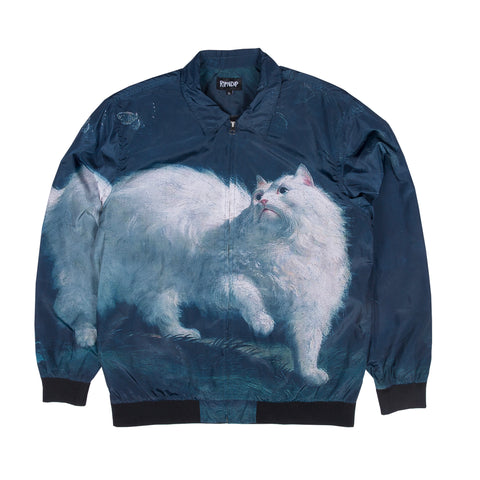 Pussy Looking Up Jacket (Print)