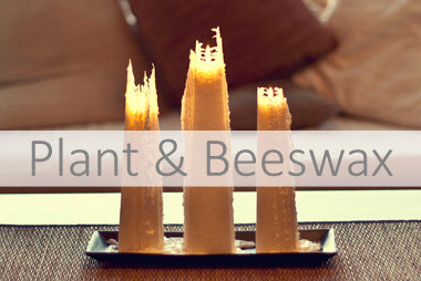 Plant and beeswax candles