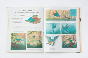 Slow Down: Bring Calm to a Busy World with 50 Nature Stories Books Abrams & Chronicle Books Ltd
