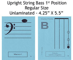 String Bass Regular Unlaminated Flashcards