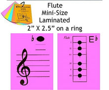 Load image into Gallery viewer, Flute Mini Laminated Flashcards