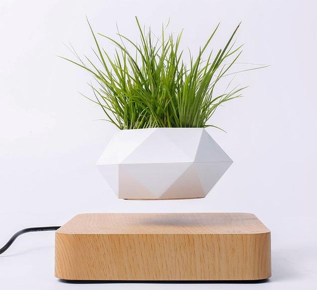 floating plant pot