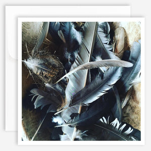 Note Card - Feathers - Jao Brand