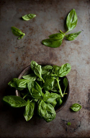 The scent of fresh basil was an inspiration for our Basil & Bergamot hand soap.