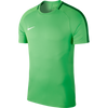Nike Academy 18 Jersey - Adult - Green Spark / Pine Green