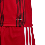 Adidas Striped 19 Jersey - Adult - Power Red / White