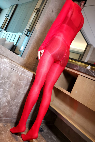 High Neck Shiny Bodystocking
