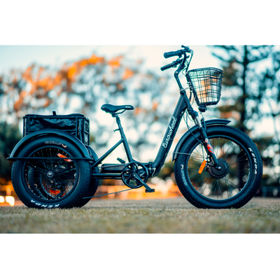 Eurowheel Electric Folding Trike Bike