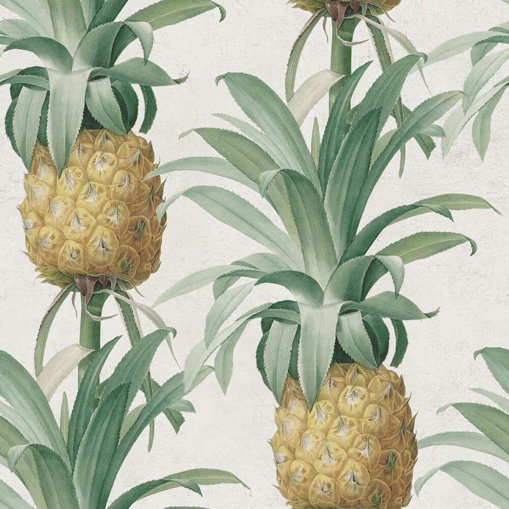 Ananas Wallpaper, Mind the Gap, Mind the Gap 2017, Wall to Wall Wallpaper | Contemporary Wallpaper Online NZ