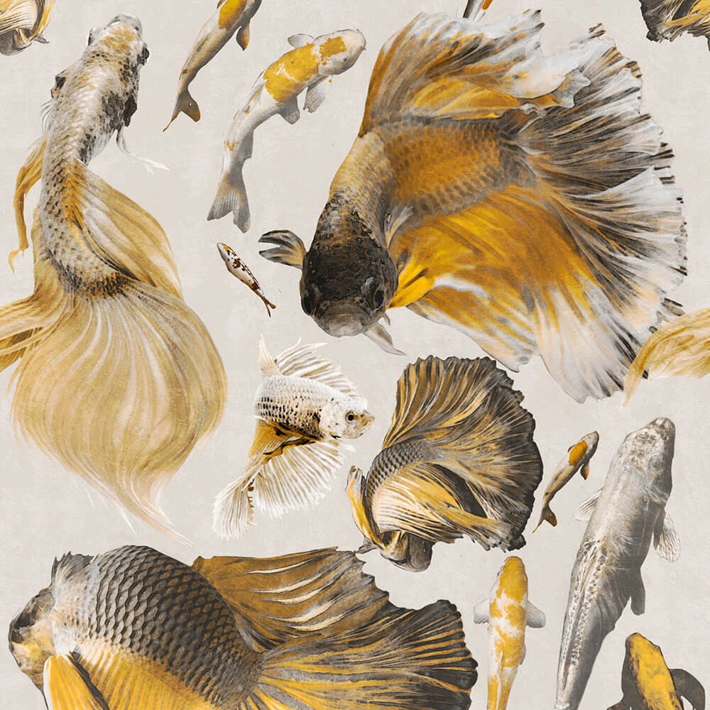Goldfish Ivory Wallpaper, Mind the Gap, Mind the Gap 2019, Wall to Wall Wallpaper | Contemporary Wallpaper Online NZ