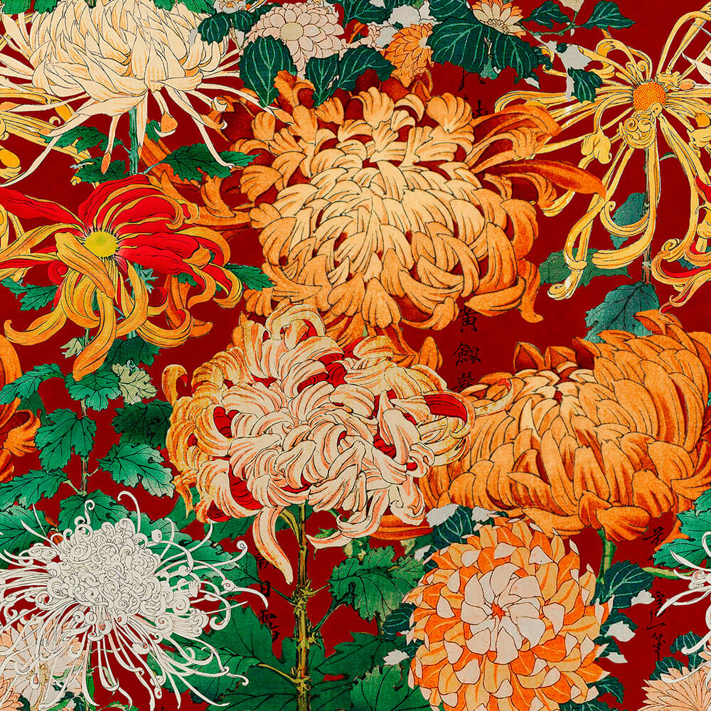 Chrysanthemums Wallpaper, Mind the Gap, Mind the Gap 2019, Wall to Wall Wallpaper | Contemporary Wallpaper Online NZ