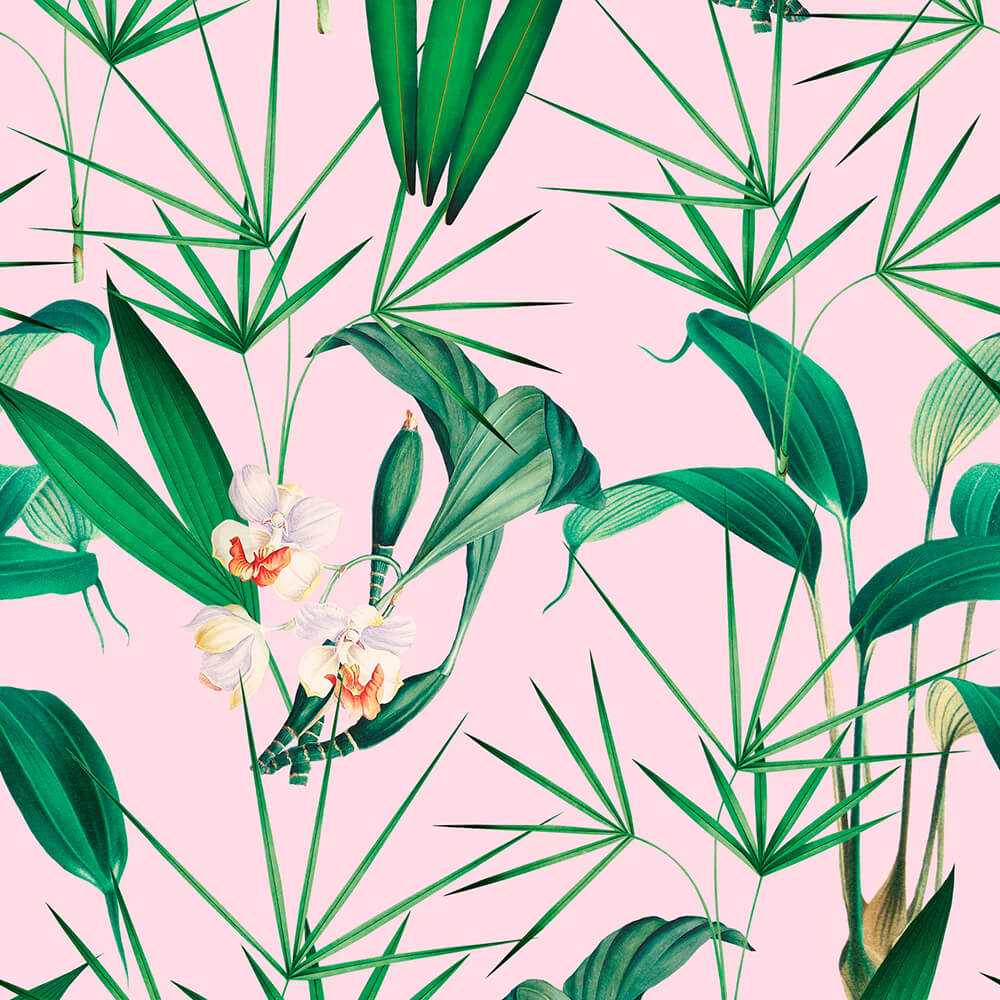 Palm Springs Wallpaper, Mind the Gap, Mind the Gap 2019, Wall to Wall Wallpaper | Contemporary Wallpaper Online NZ