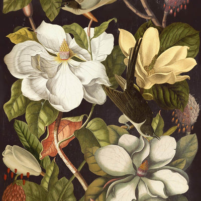 Magnolia Wallpaper, Mind the Gap, Mind the Gap 2018, Wall to Wall Wallpaper | Contemporary Wallpaper Online NZ