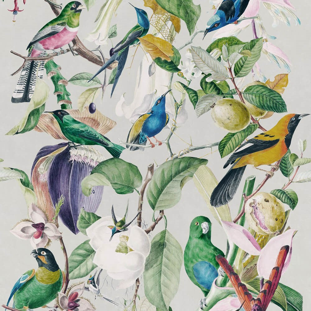 Tropical Birds Wallpaper, Mind the Gap, Mind the Gap 2018, Wall to Wall Wallpaper | Contemporary Wallpaper Online NZ