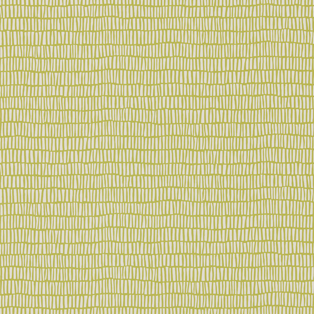Tocca Kiwi Wallpaper, Scion, Lohko, Wall to Wall Wallpaper | Contemporary Wallpaper Online NZ