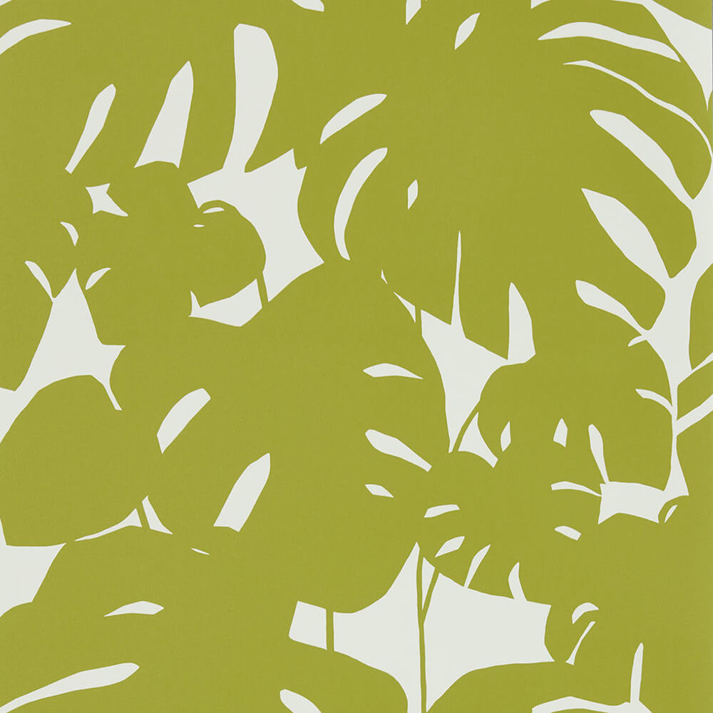 Arizona Kiwi Wallpaper, Scion, Nuevo, Wall to Wall Wallpaper | Contemporary Wallpaper Online NZ