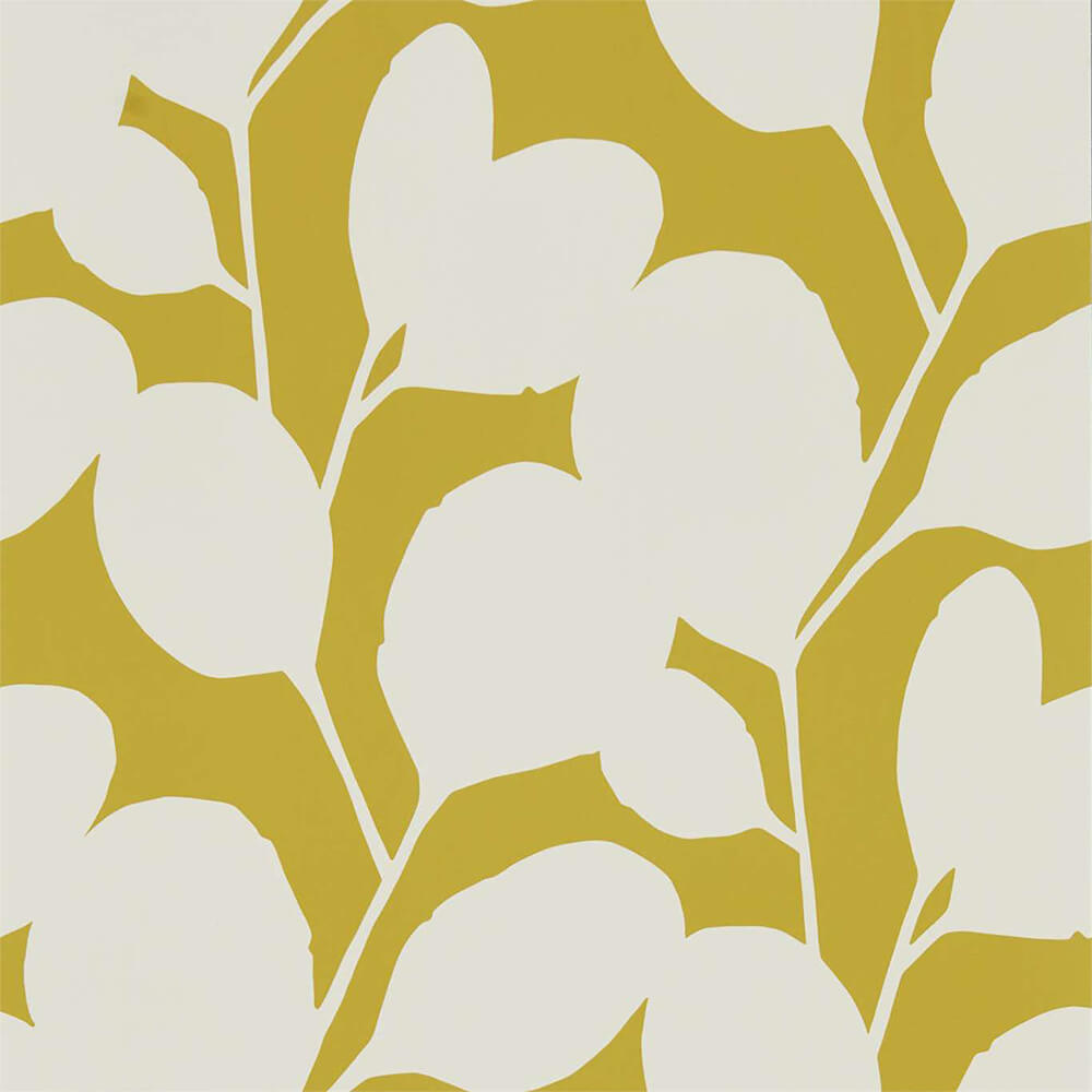 Ocotillo Dandelion Wallpaper, Scion, Nuevo, Wall to Wall Wallpaper | Contemporary Wallpaper Online NZ