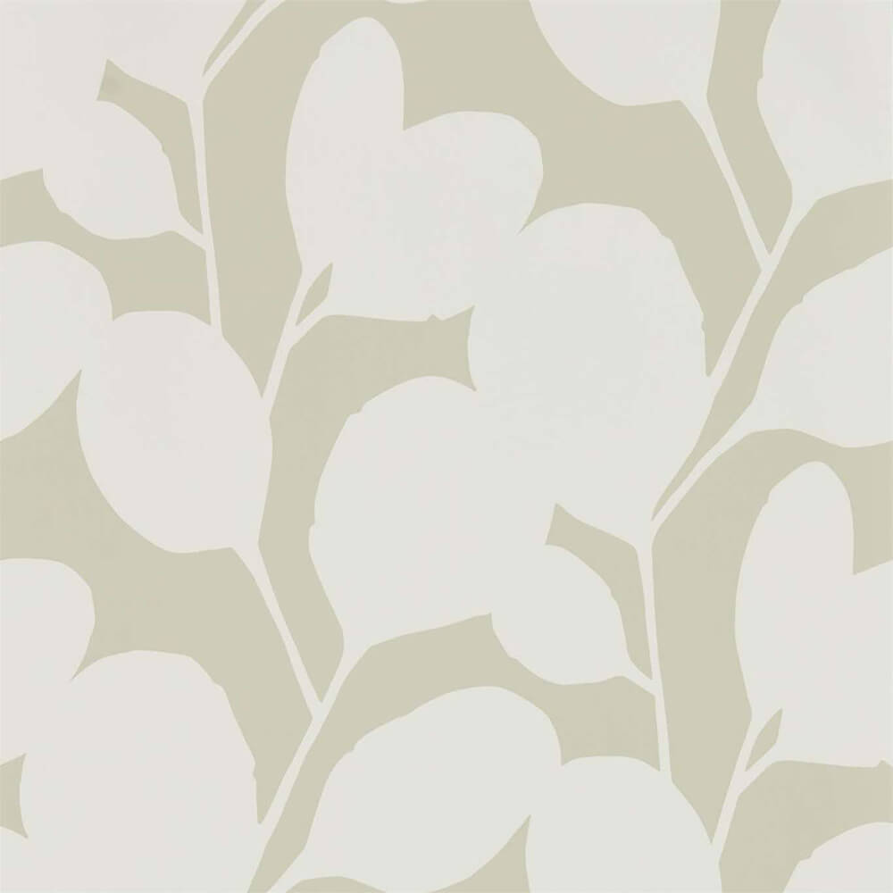Ocotillo Pebble Wallpaper, Scion, Nuevo, Wall to Wall Wallpaper | Contemporary Wallpaper Online NZ