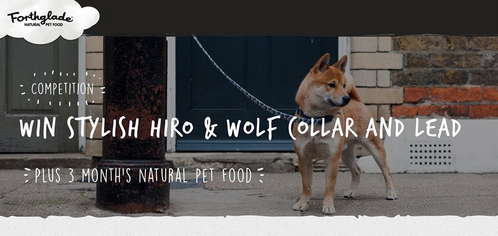 WIN £100 of Hiro + Wolf goodies with Forthglade pet food
