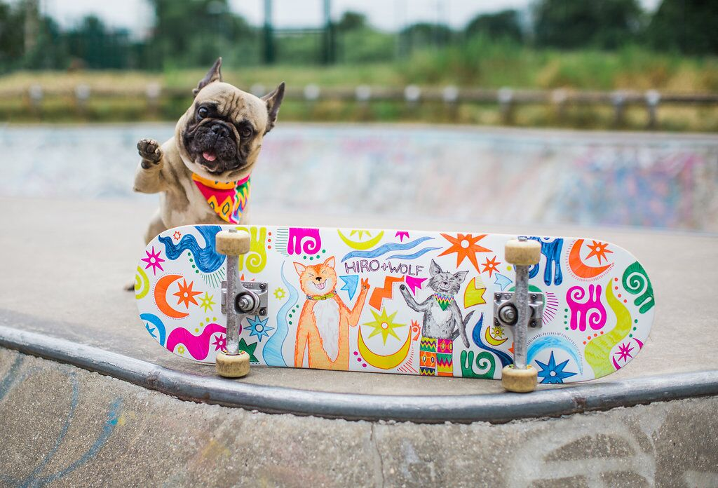INTERVIEW | Eroc the Skateboarding Dog