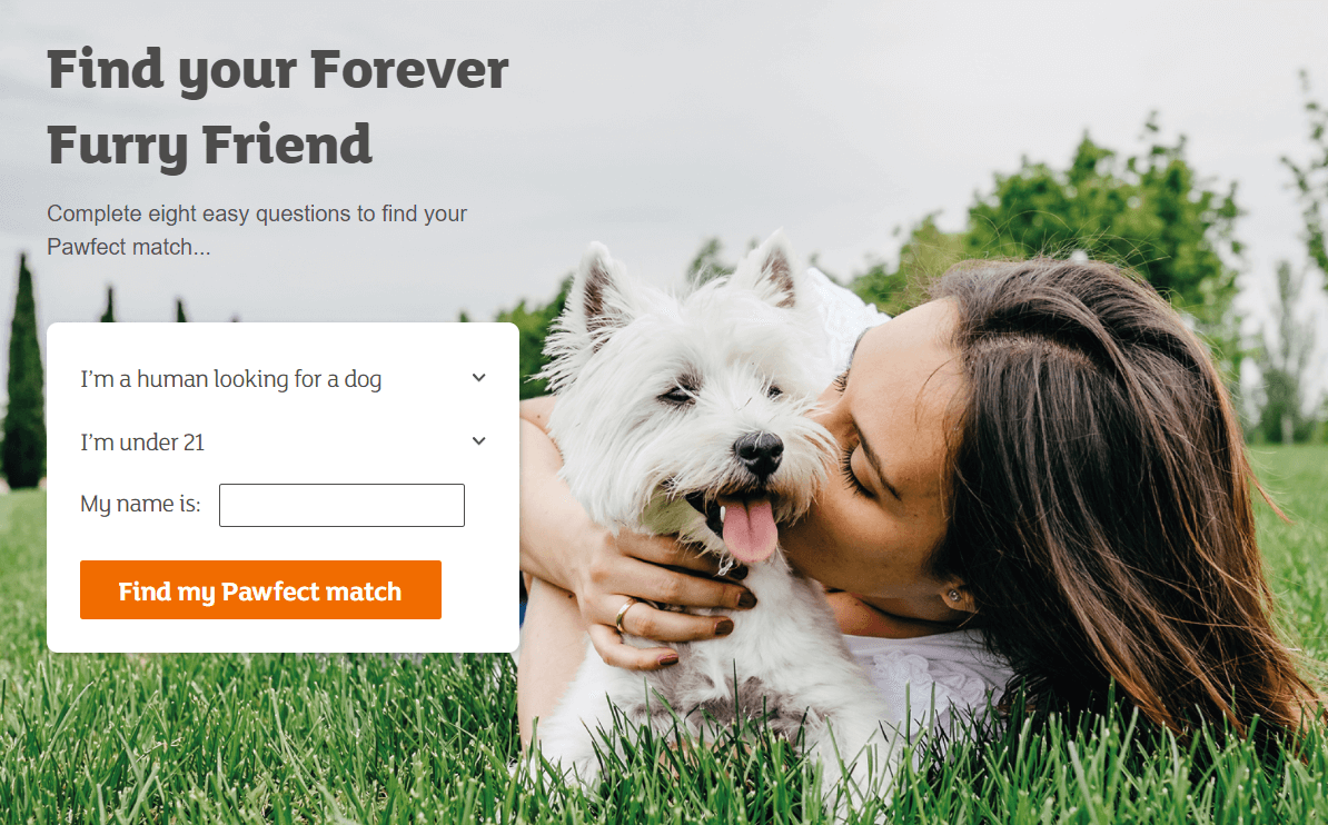 find your pawfect match quiz