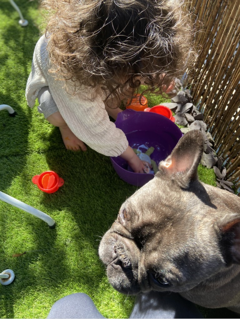 child playing in the garden with frenchie